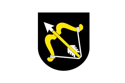 Bandera Savonia del norte