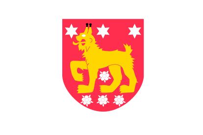 Bandera Tavasnia