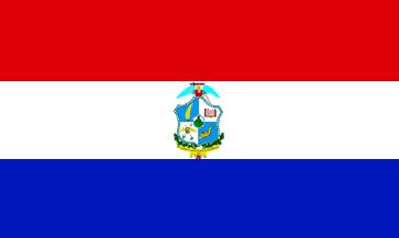 Bandera San Miguel (El Salvador)