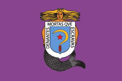 Bandera Castelao feminista