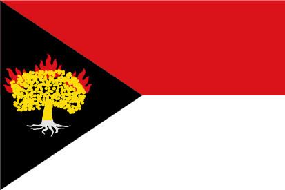 Bandera Carbonero de Ahusín