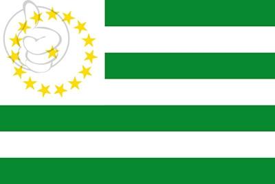 Bandera Departamento de Caquetá