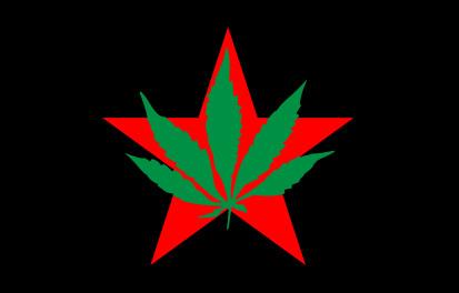 Bandera Partido Internacional de la Juventud