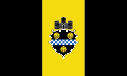 Bandera Pittsburgh