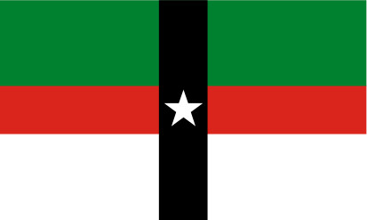 Bandera Denison