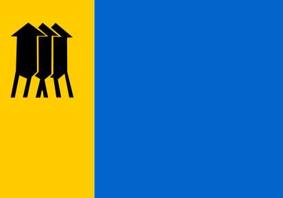 Bandera Porto Velho