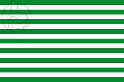 Bandera Departamento de Meta