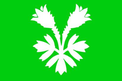 Bandera Oppland
