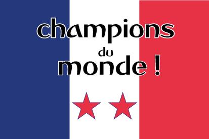 Bandera France champions