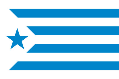 Bandera Estelada Espanyol