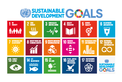 Bandera Sustainable Development Goals UN