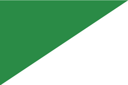 Bandera El Álamo S/E