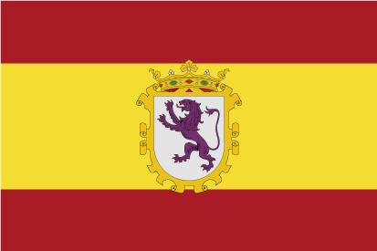 Bandera España y León