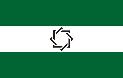 Bandera Somos andaluces estrella negra
