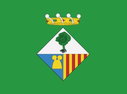 Bandera Calonge Verde
