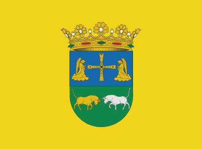Bandera Yernes y Tameza amarillo