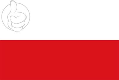 Bandera Santiago de Arma de Rionegro