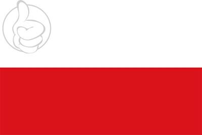 Bandera San Carlos