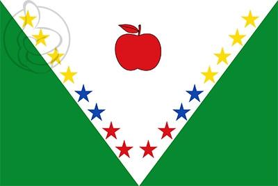 Bandera Nuevo Colón