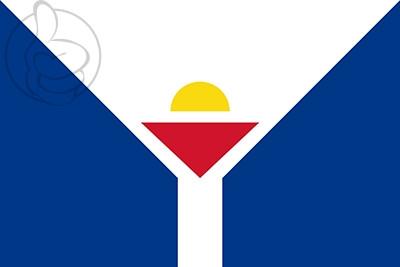 Bandera San Martín