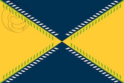 Bandera Olivares