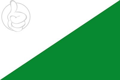 Bandera Las Pedroñeras