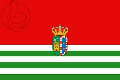 Bandera Puebla de Guzmán