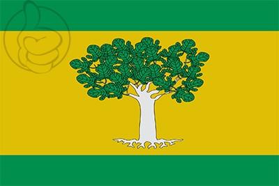 Bandera Higueras