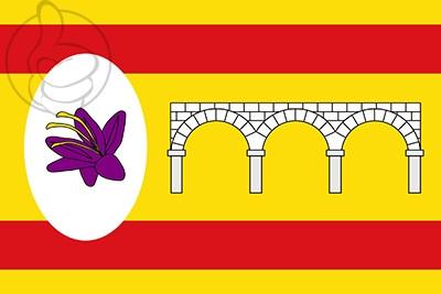 Bandera Cortes de Aragón