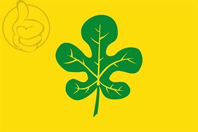Bandera Figuerola del Camp