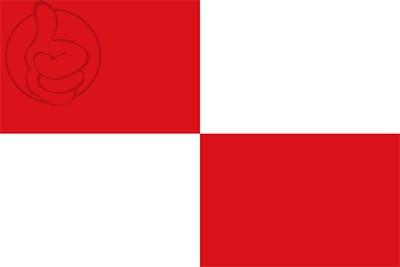 Bandera La Torre de l\'Espanyol
