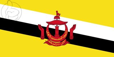 Drapeau Brunéi