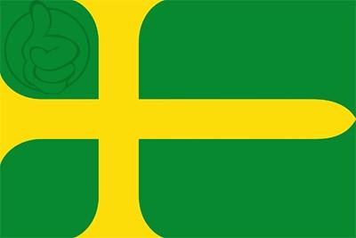 Bandera Avinyó
