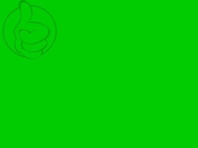 Bandera Drapeau Vert