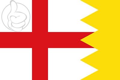 Bandera Luesia