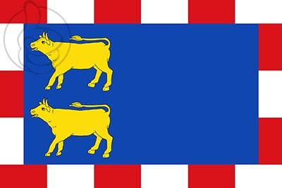 Bandera Novillas