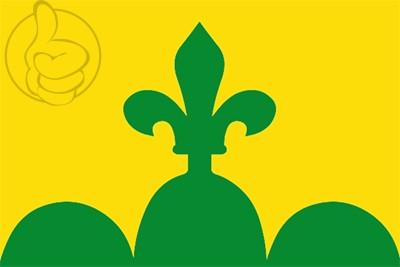 Bandera Bellpuig