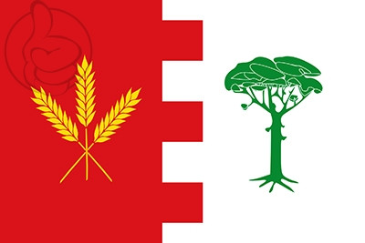 Bandera Ataquines
