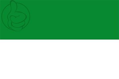 Bandera Bakio