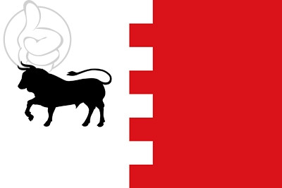 Bandera Villavaquerín