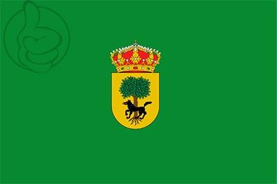 Bandera Vinuesa