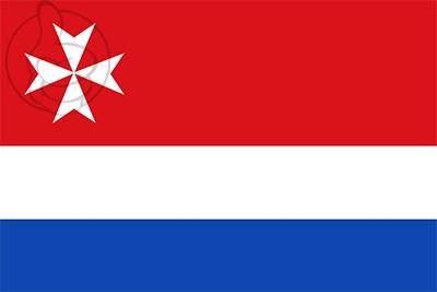 Bandera Castrillo de Villavega