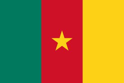 Bandera Cameroun