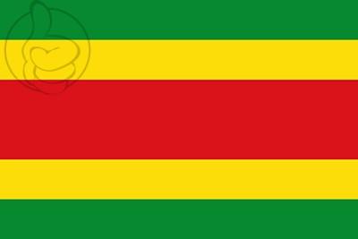Bandera San Justo de la Vega