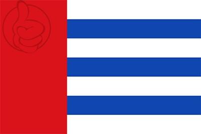 Bandera Villaviudas