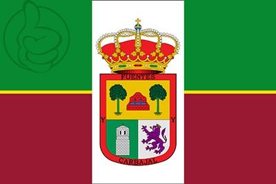 Bandera Fuentes de Carbajal