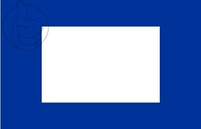 Bandera Papa