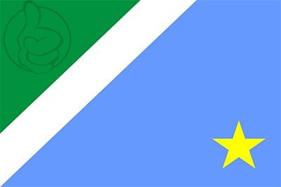 Bandera Mato Grosso del Sur