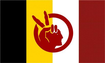Bandera Movimiento Indígena Estadounidense