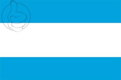 Bandera Maardu